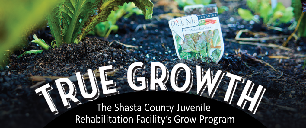THE SHASTA COUNTY Probation Department's Juvenile Rehabilitation Facility is growing more than just fruits and vegetables-through-its-innovative-GROW-program;-it's-growing-the-lives-of-the-young-offenders-in-its-care.young-offenders-in-its-care.